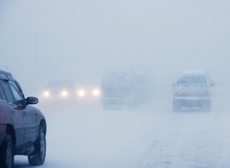 multiple cars in a snowstorm