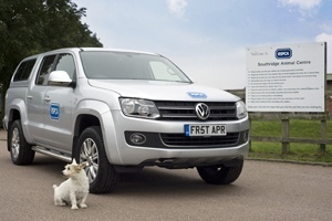 Volkswagen and he RSPCA driving dogs was an April Fools joke