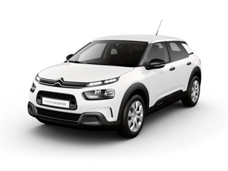 C4 Cactus *New Model*